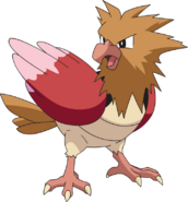 021Spearow AG anime