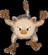 056Mankey Pokémon PokéPark