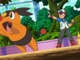 BW025: Battling for the Love of Bug-Types!
