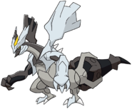 646Black Kyurem Dream