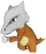 105Marowak Pokémon PokéPark