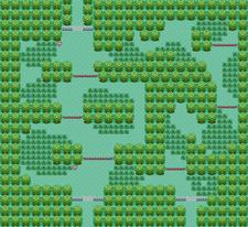 에메랄드 등화숲