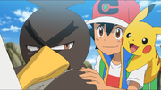 Ash and Farfetch'd