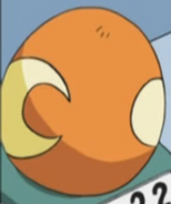 Teddiursa Egg