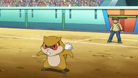 오메가의 보르쥐