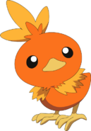 255Torchic AG anime