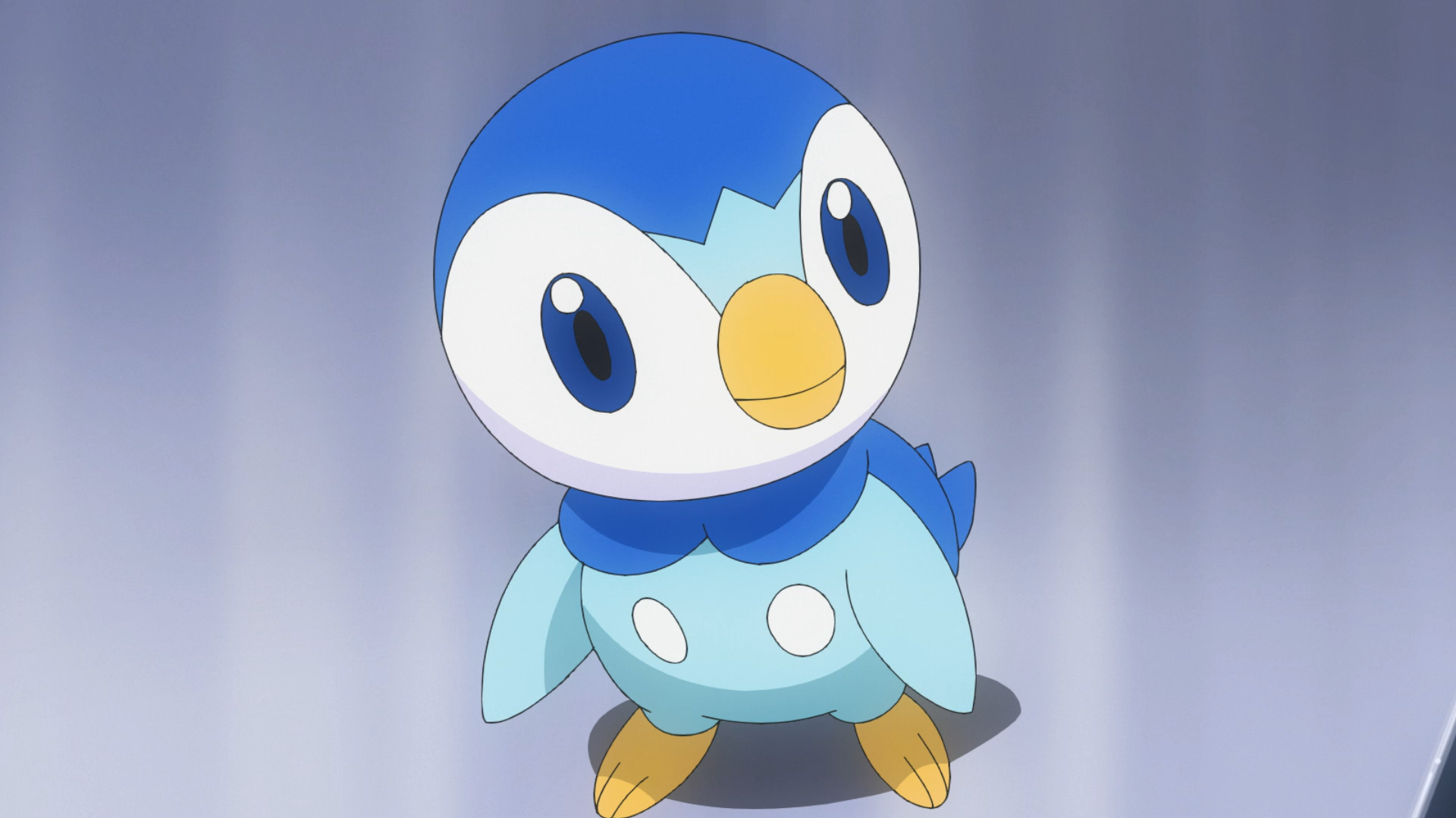 Dawn Piplup