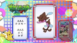 Pokémon Quiz XY024