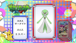 Pokémon Quiz XY028