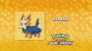 SM032 Who's that Pokémon dub