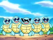 Squirtle in Squirtle Squad