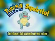 PokémonTriviaSquirtle