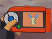 Minun in pokedex