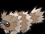 지그제구리 (포켓몬)