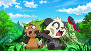Clemont's Chespin and Serena's Pancham punching each other