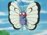 Ash Butterfree