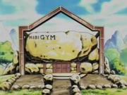 애니메이션에서의 회색체육관