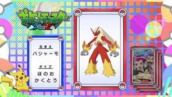 Pokémon Quiz XY031