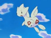 Misty Togetic