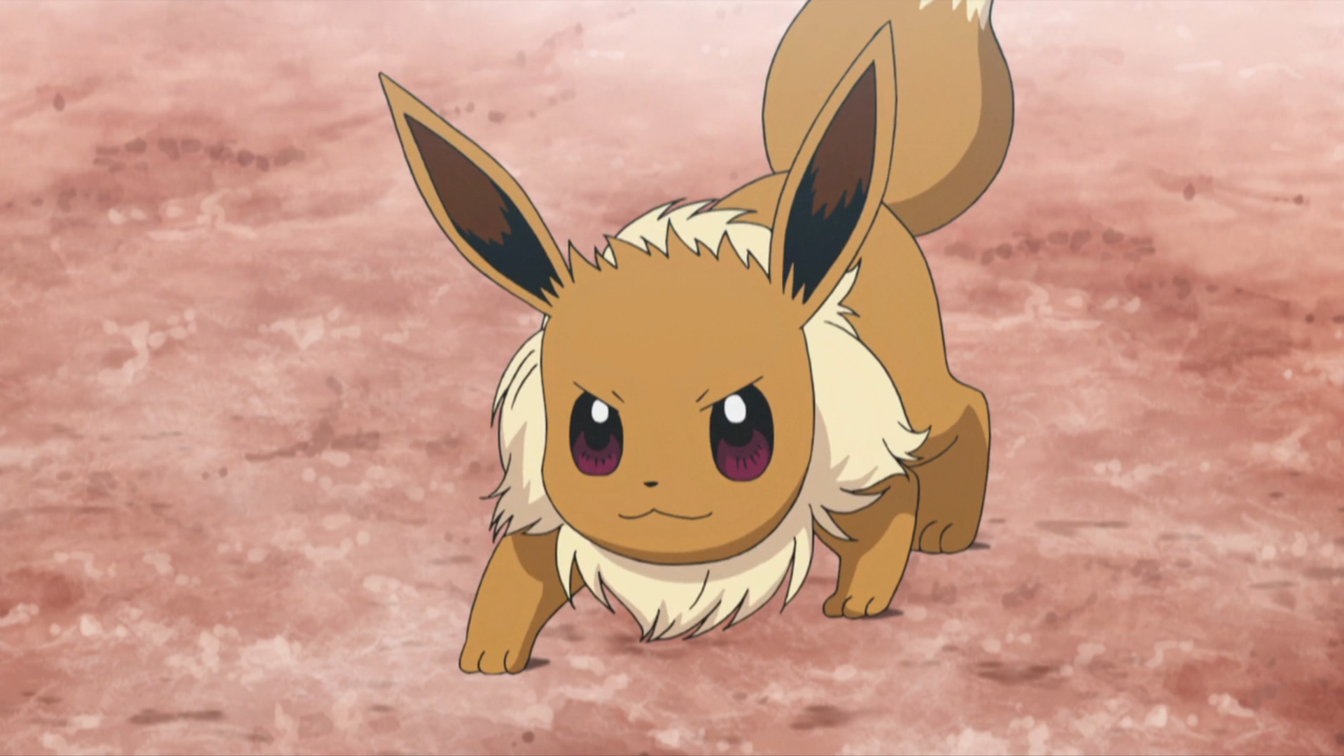 All About Eevee Wikidex Fandom Powered By Wikia Kidskunstinfo