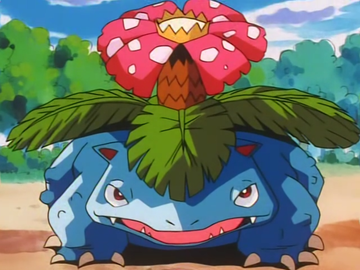 Battle Park Venusaur