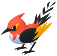 662Fletchinder Pokémon HOME