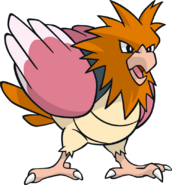 021Spearow Dream