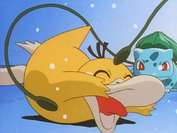 Ash Bulbasaur Tickle