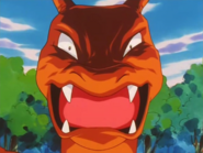 Battle Park Charizard Scary Face
