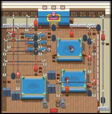 Veilstone Gym Pt