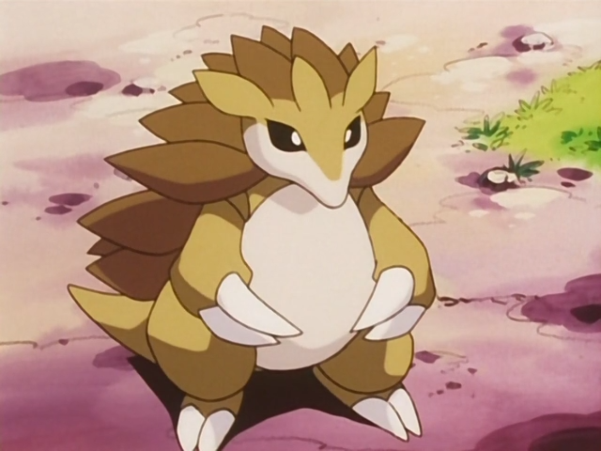 Image result for pokemon tv show sandslash
