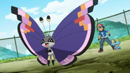 Elegant Vivillon anime
