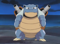 지미의 거북왕