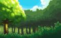 HGSS 상록숲 오후
