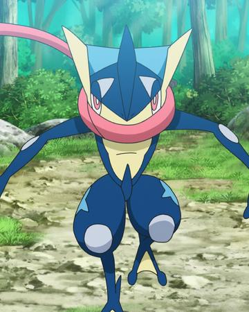 Greninja Anime Pokemon Wiki Fandom