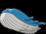 고래왕 (포켓몬)