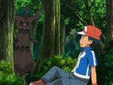XY038: Vriendschap Sluiten in het Bos!