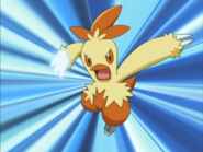 May Combusken Sky Uppercut