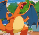 Battle Park owner's Charizard