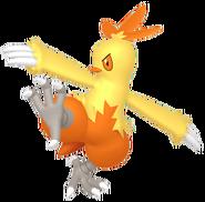 256Combusken Pokémon HOME