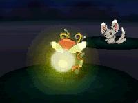 BW Tail Glow