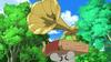 Bird Pokemon Luring Machine