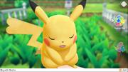 Partner Play (Pokémon Let's Go)