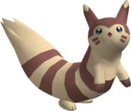 162Furret Pokemon Colosseum