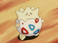 Misty Togepi