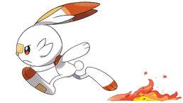 Pokemon scorbunny2