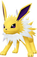 135Jolteon LGPE