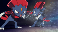 Kidd Summers Weavile Blizzard