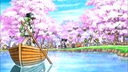 Rond de Sakura
