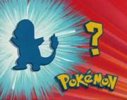 Who's That Pokémon (TB011)